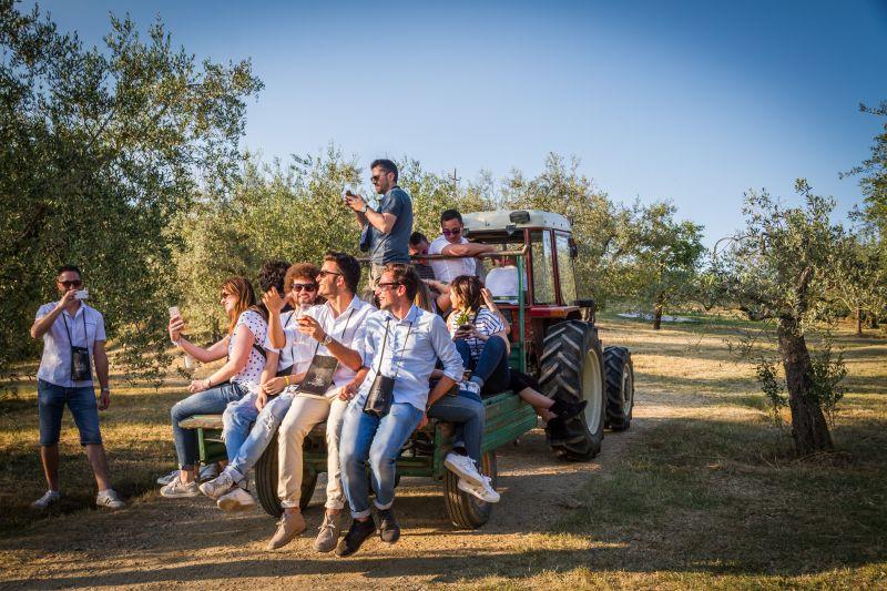 turismo-del-vino