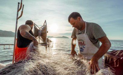 Genova-pescatori-per-un-giorno-su-un-peschereccio